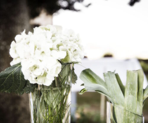 flowers&decoration27