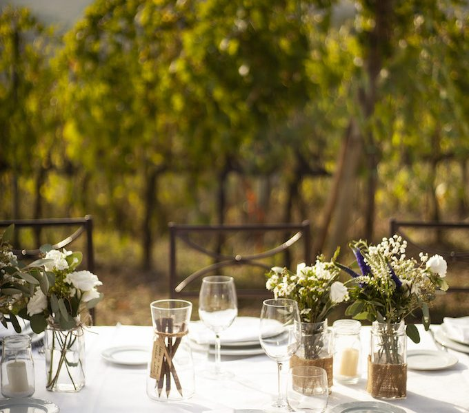 pievedepitti_wedding_vineyard11