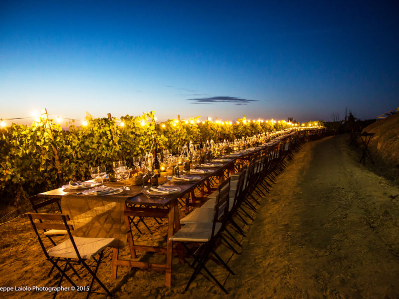 pievedepitti_wedding_vineyard32