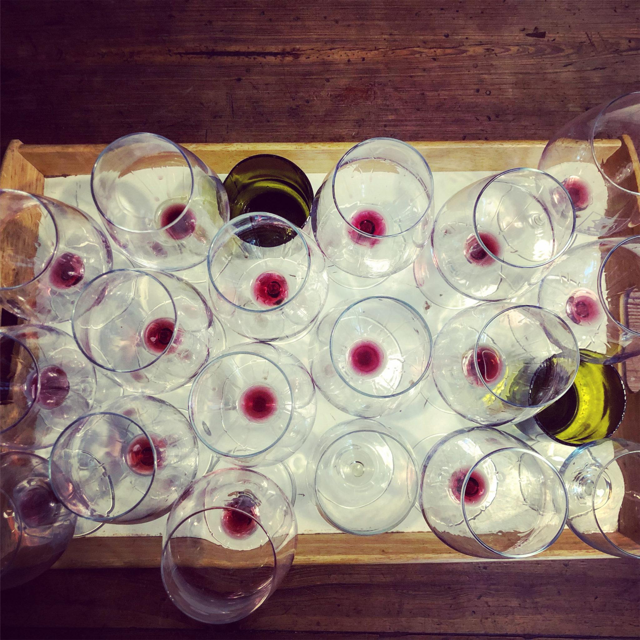 vini bevuti